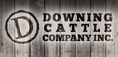 Downing Cattle Company Header